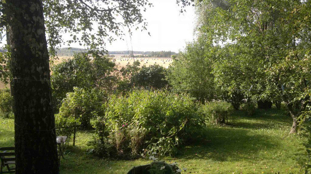Blick von unserem Garten im Sommer.jpg